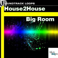 Big Room House Loops