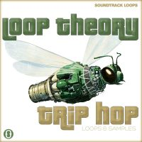 Download Trip Hop Loops & Drum Hits Royalty Free By Loop Theory