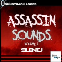Assasin Sounds - SilentJ - Bus Loops