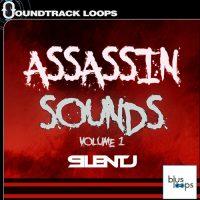 Assasin Sounds - SilentJ - Bus Loops