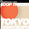 Thumbnail Loop Theory Tokyo Downtempo Recycle RX2