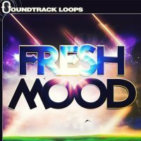 Fresh Mood Chillout Loops - Adrian Walthers