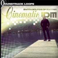 Cinematic IDM - Loops and Samples by Montra