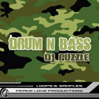 Drum n' Bass Jungle - Loops and One-Shots