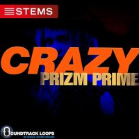 Crazy - House DJ Stems
