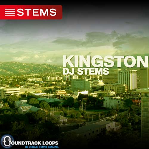 Download Reggae DJ Stems - Kingston