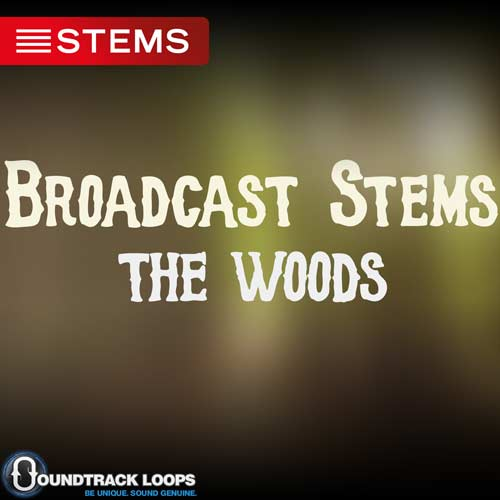 Download Broadcast STEMS The Woods - DJ STEMS for a Live Audience