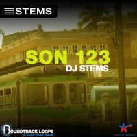 Download Latin DJ STEMS Son - Cuban Traditionals