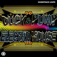 Download Sidechained Loops and One-Shots Electro House soundpack by DJ Puzzle