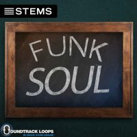 Download Funky Hip Hop DJ STEMS