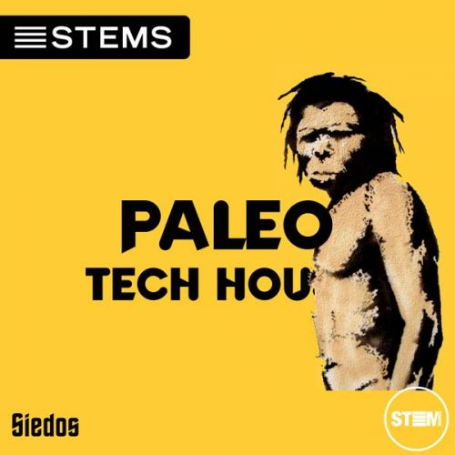 Download Tech House DJ STEMS Tracks