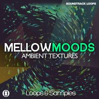 Download Ambient Sounds Royalty Free Loops from Soundtrack Loops