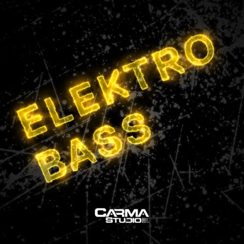 Download Electro Bass royalty free loops by Carma Studio