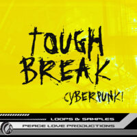 Download Royalty Free Tough Break Cyberpunk! Loops by PLP